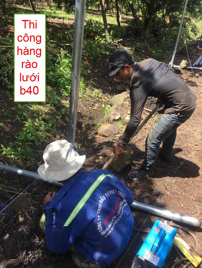 Thi công cọc hàng rào lưới b40
